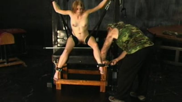 Torrid Danielle Disciplined